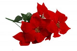 Gwiazda betlejemska 5 kwiatów - czerwona