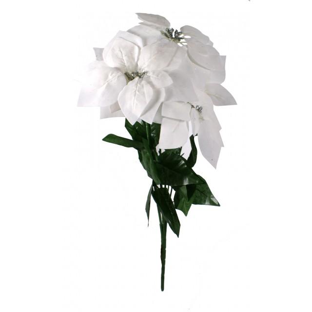 Gwiazda betlejemska 5 kwiatów - biała