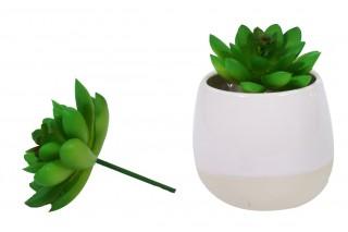 Kwiat sztuczny  - sukulent