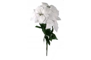 Gwiazda betlejemska 7 kwiatów - biała