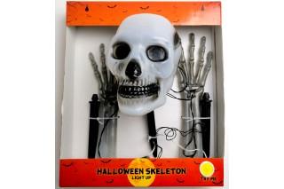 Szkielet Halloween z oświetleniem