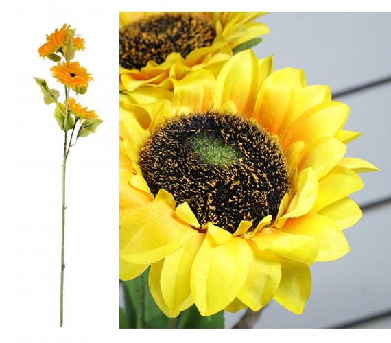 Słoneczniki 5 kwiatów
